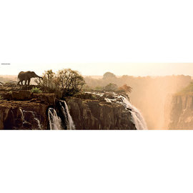 Heye PZ1000 Elephant