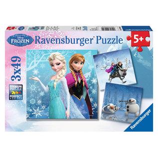 PZ3x49 Winter Adventures Frozen