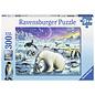 PZ300XL Rencontre des animaux polaires