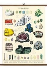Cavallini Vintage School Chart