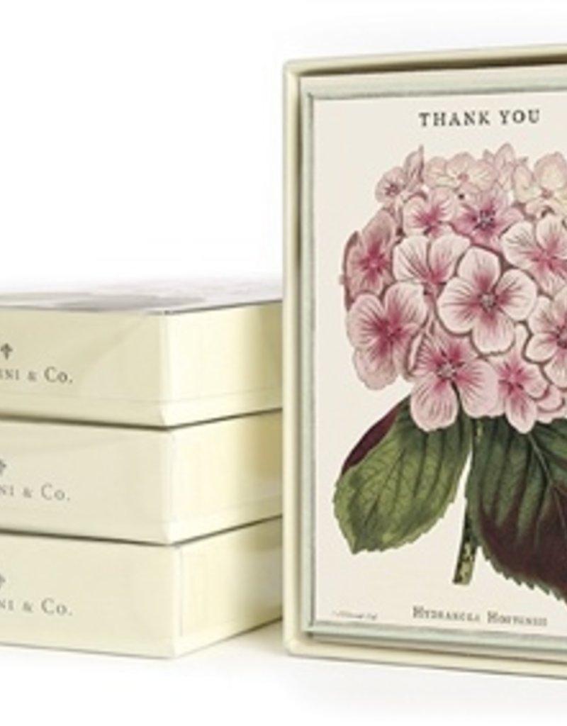 Cavallini Cavallini Boxed Thank You Cards