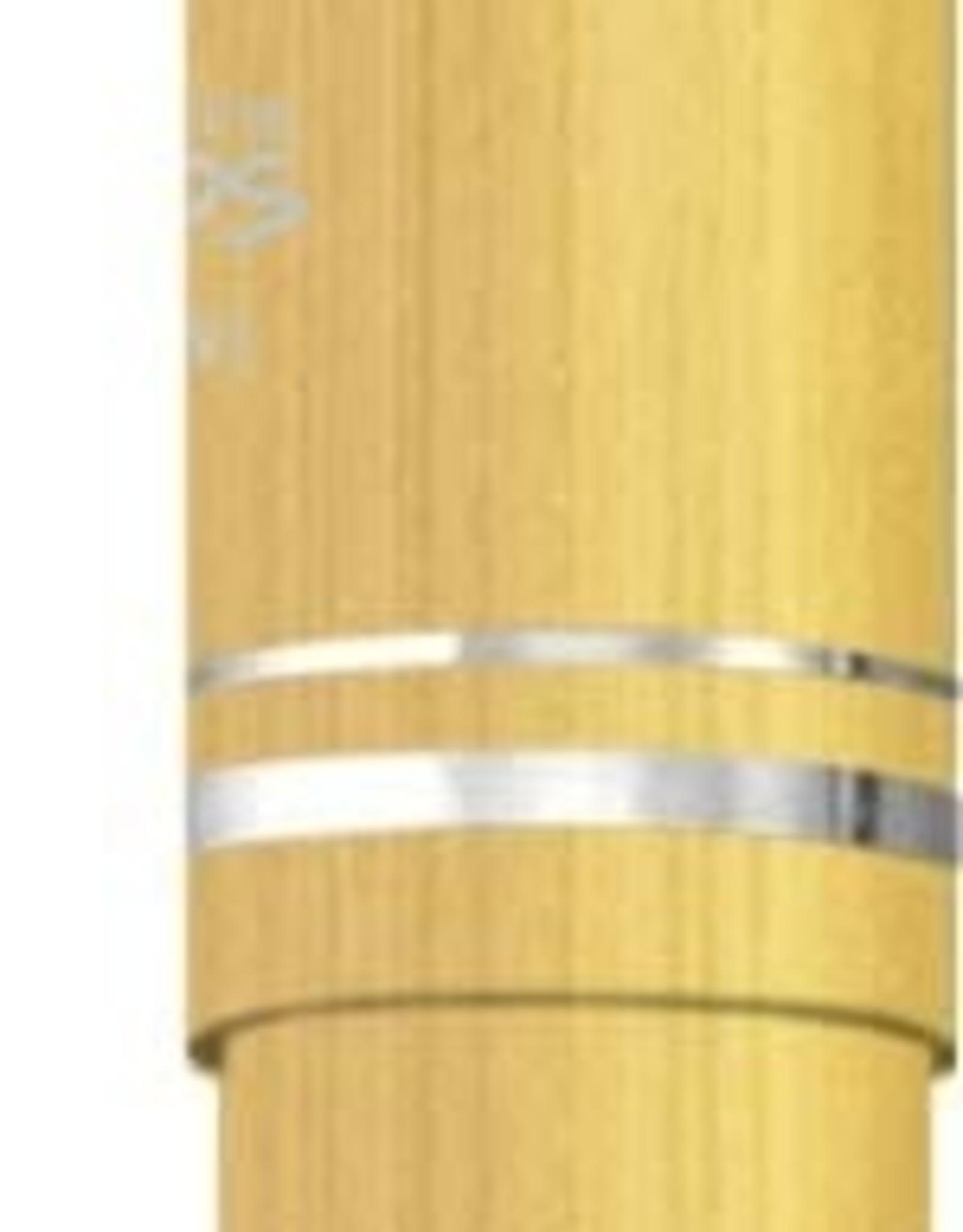 IWIC IWI Cosmos Fountain Pen EF