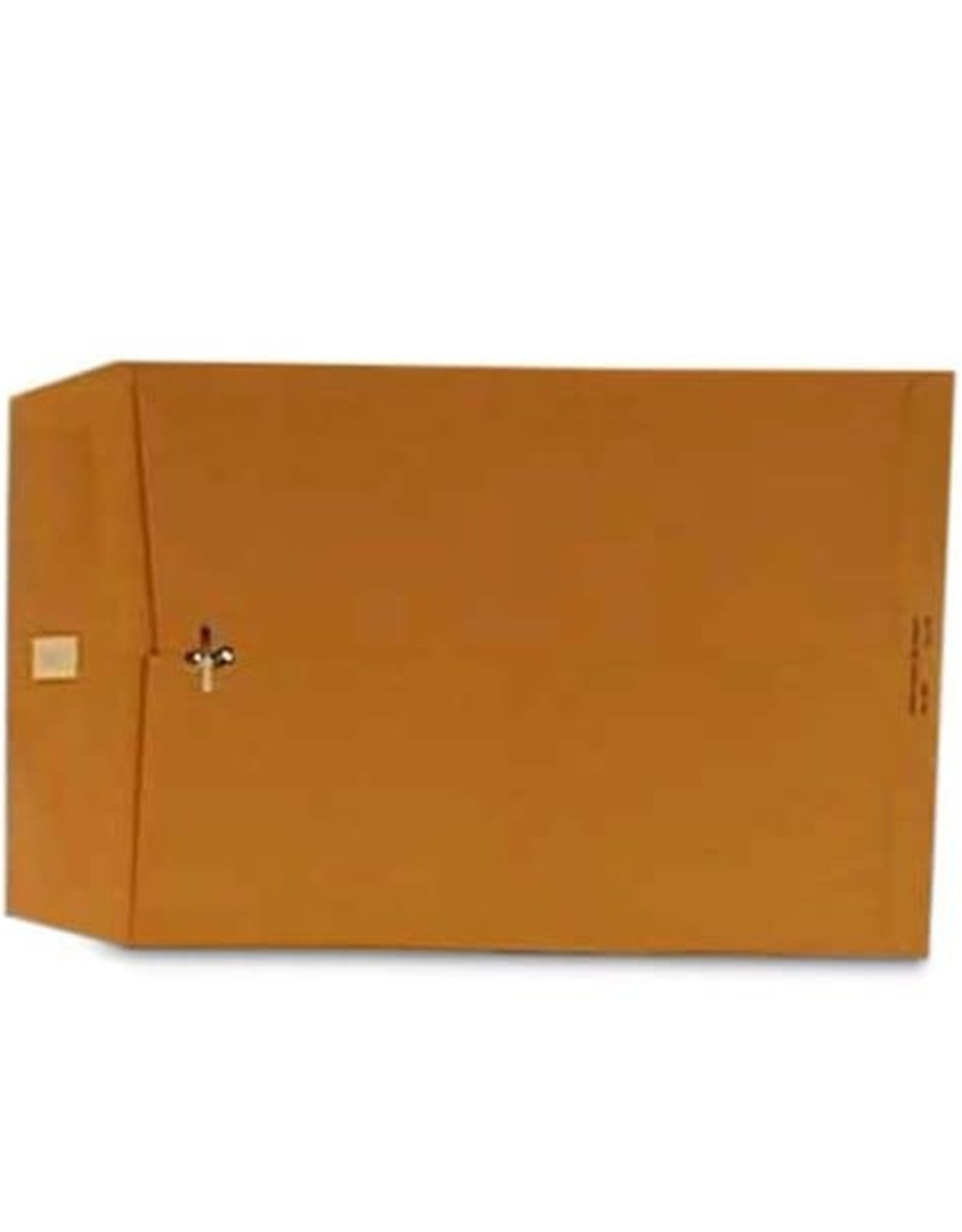 Paper Mart Manila Clasp Envelopes