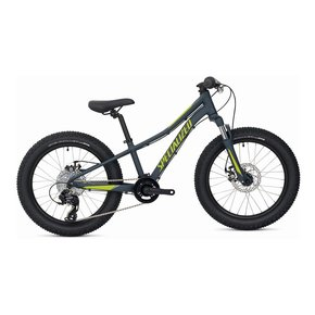 Specialized Riprock 20""
