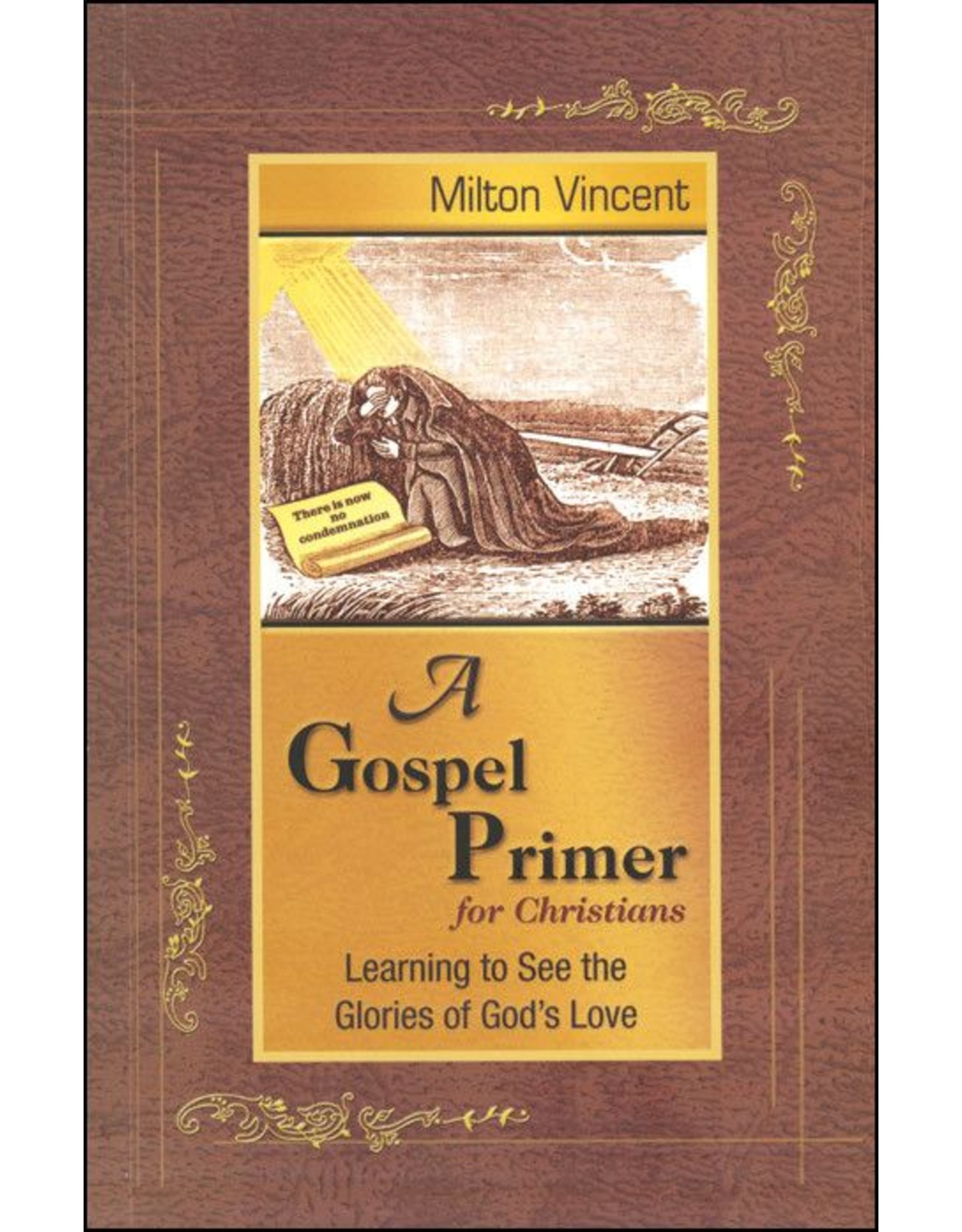 Focus Publishing A Gospel Primer for Christians: Learning to See the Glories of God's Love