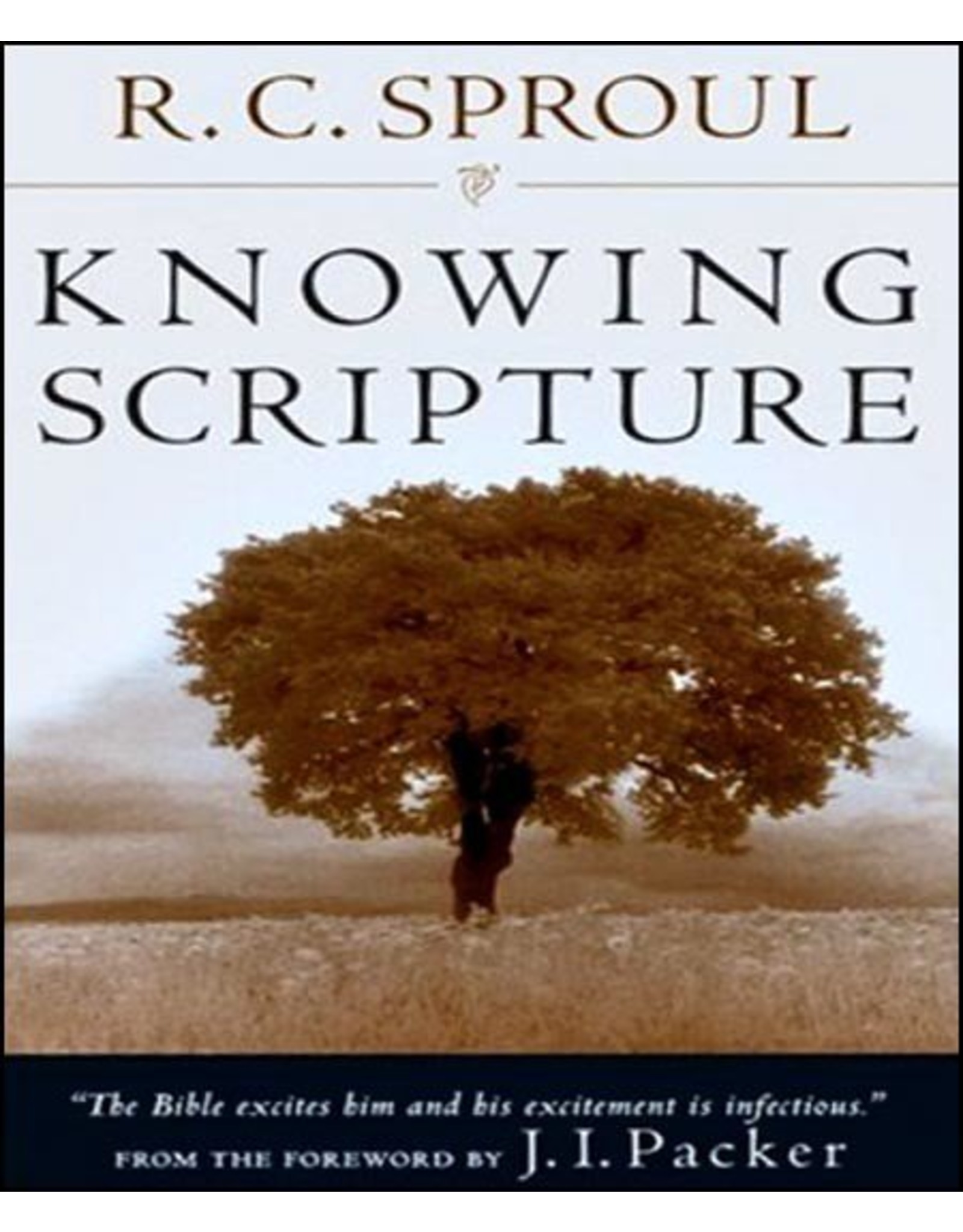 Hovel Audio Knowing Scripture (Audio CD)