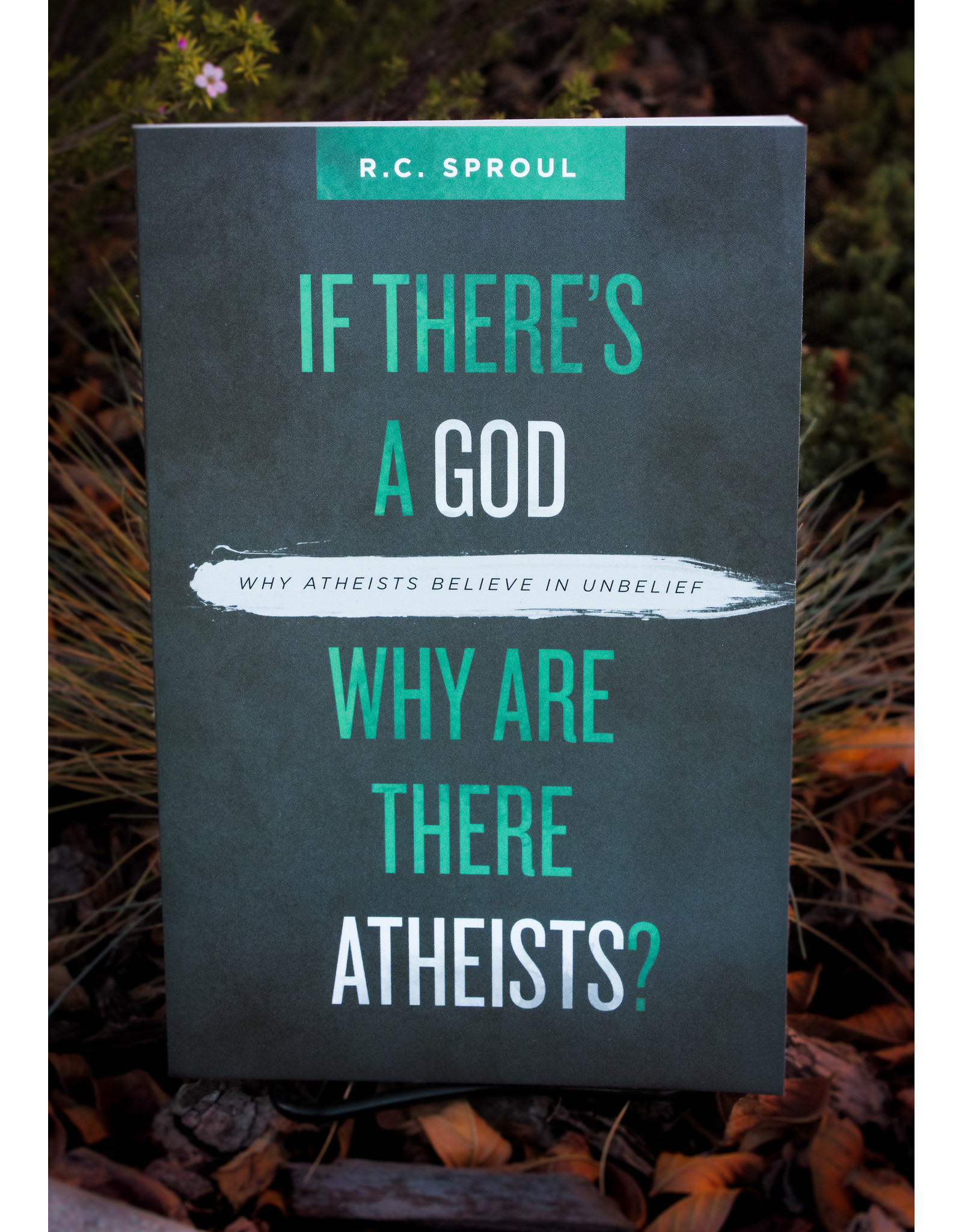Christian Focus Publications (Atlas) If There's a God Why Are There Atheists? Why Atheists Believer in UnBelief