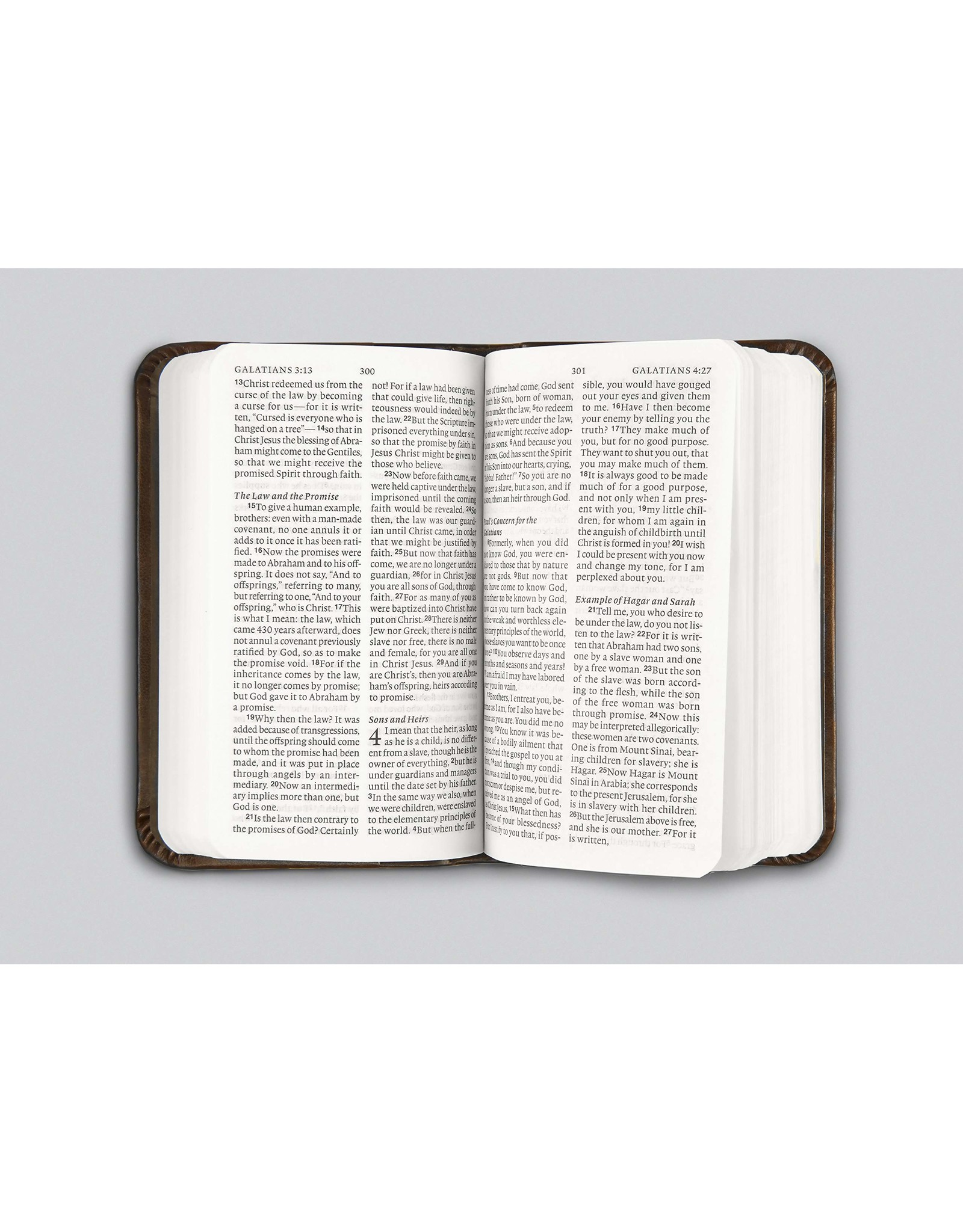 Crossway / Good News ESV Vest Pocket NT with Psalms and Proverbs (Trutone, Silver Sword)