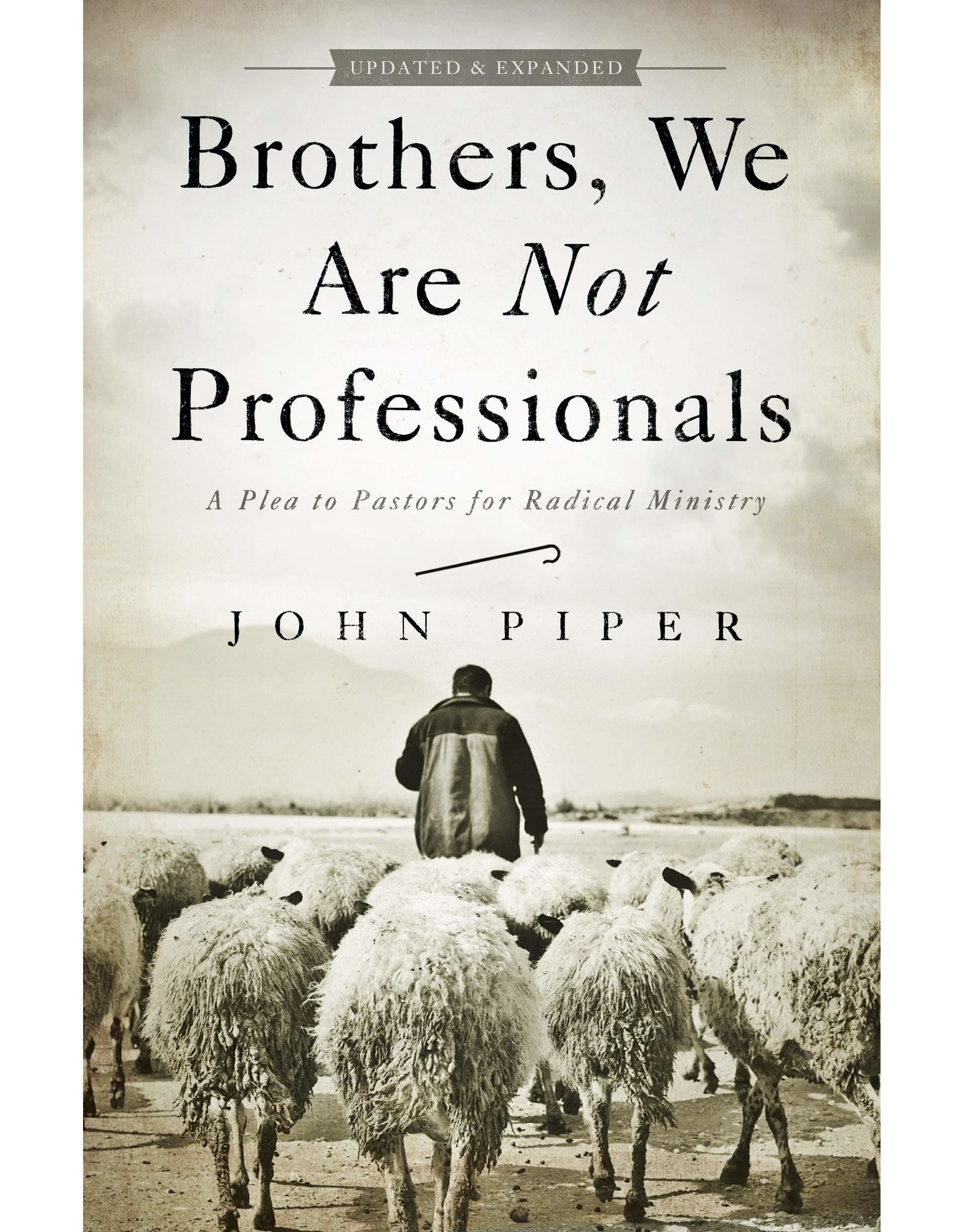 Broadman & Holman Publishers (B&H) Brothers, We Are Not Professionals: A Plea to Pastors for Radical Ministry (Updated ed.)