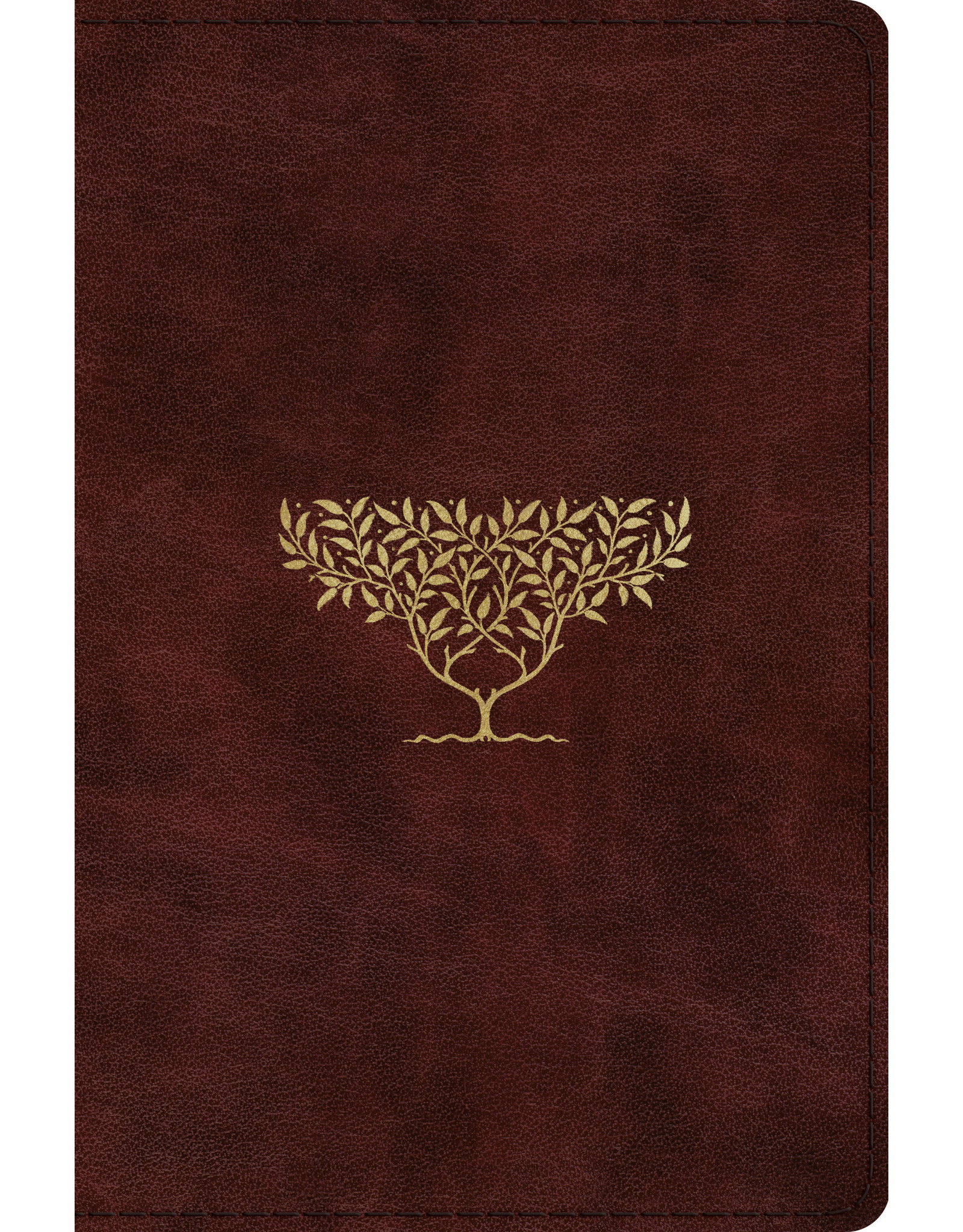 Crossway / Good News ESV Compact Bible (TruTone, Burgundy, Olive Tree Design)