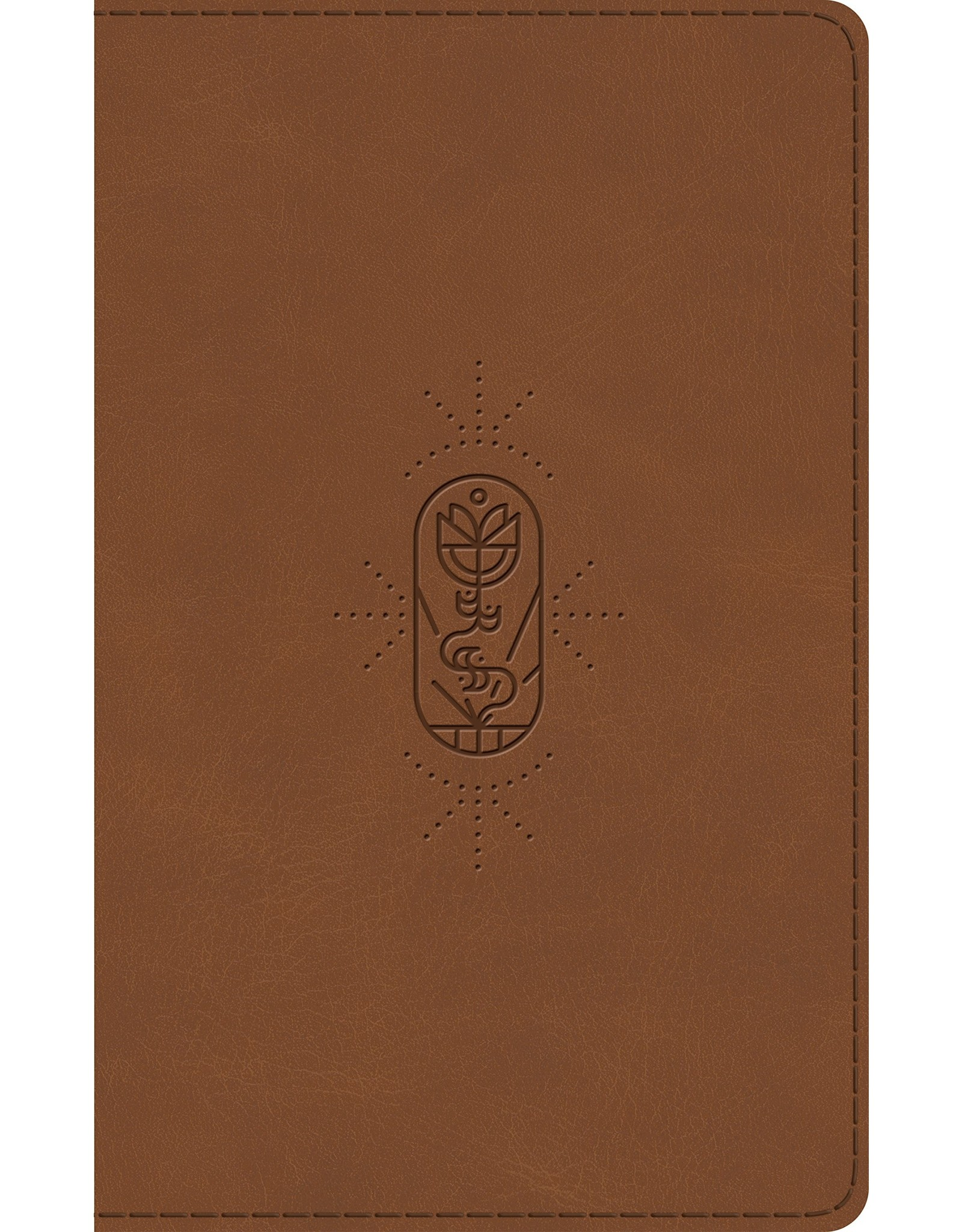 Crossway / Good News ESV Kid's Thinline Bible - Brown The True Vine Design TruTone