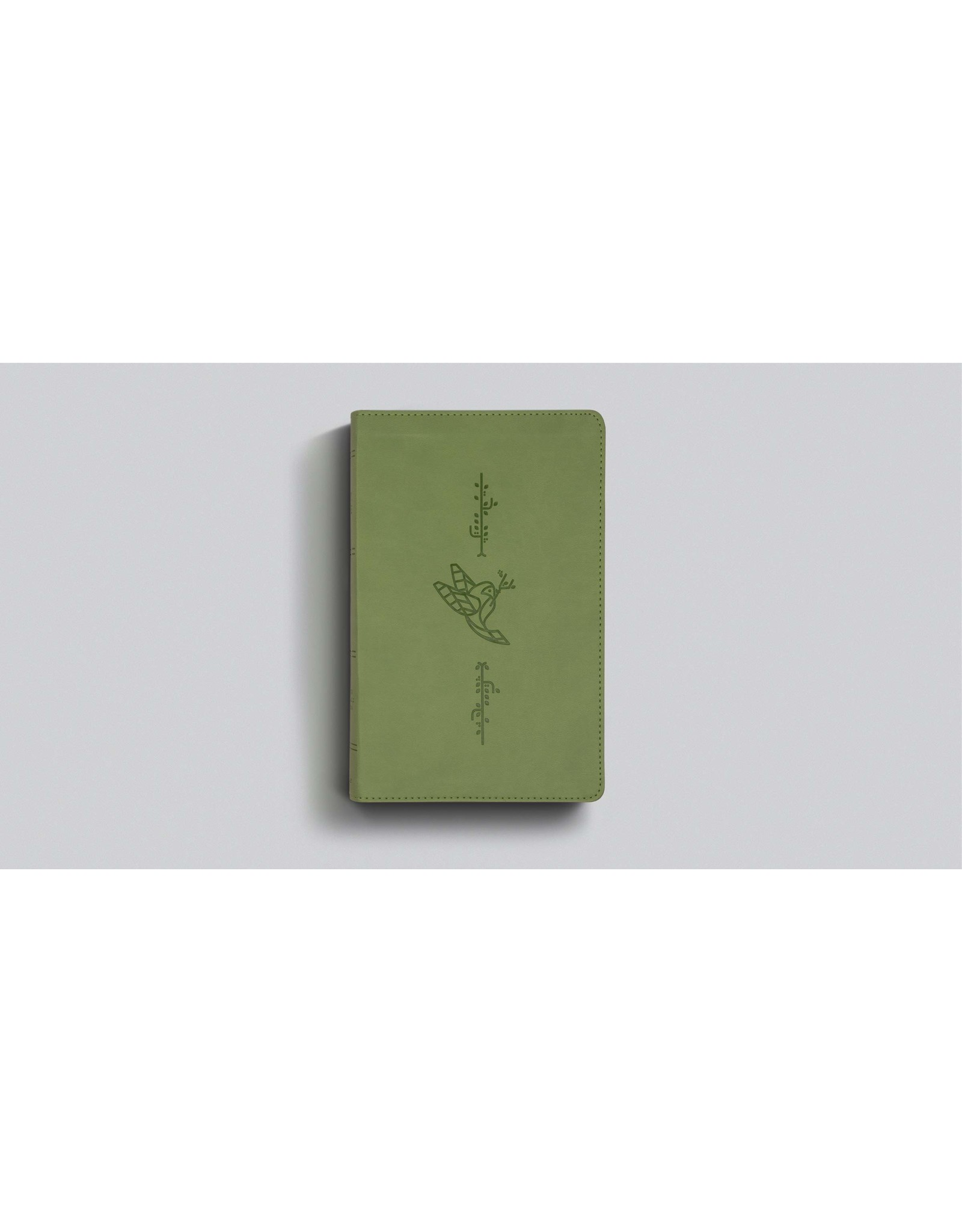 Crossway / Good News ESV Kid's Bible, Thinline (TruTone, Bird of the Air)