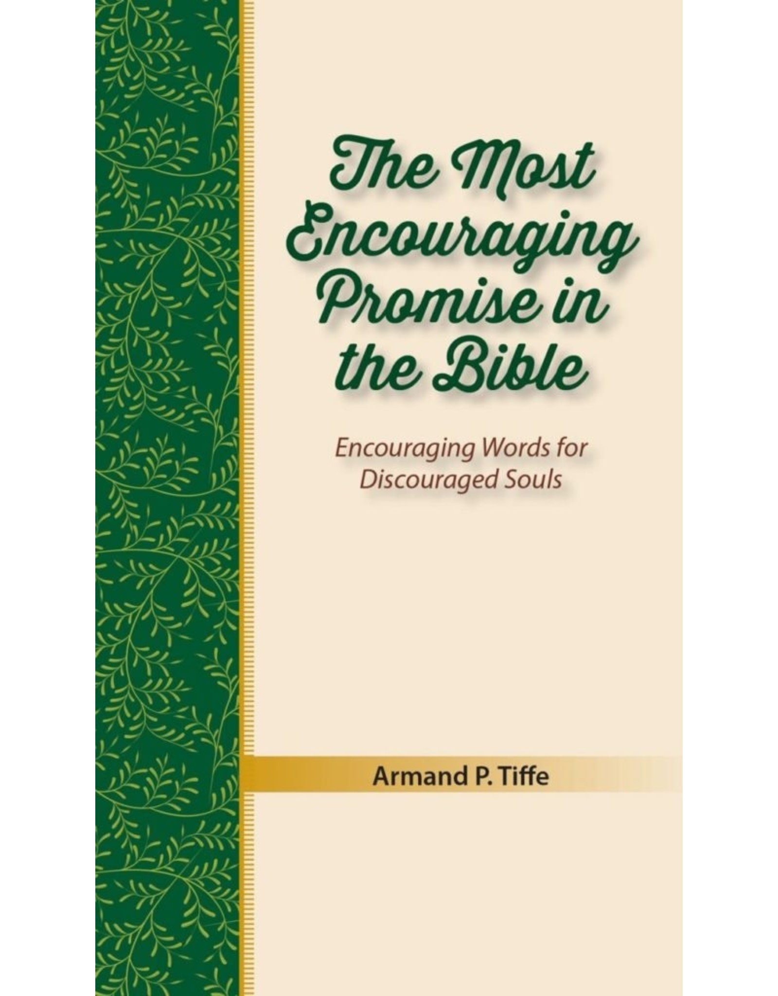 Focus Publishing The Most Encouraging Promise in the Bible: Encouraging Words for Discouraged Souls