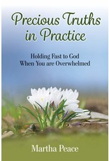 Focus Publishing Precious Truths in Practice