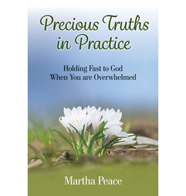 Focus Publishing Precious Truths in Practice