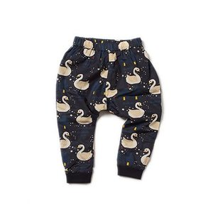 Little Green Radicals Organic Jelly Bean Jogger
