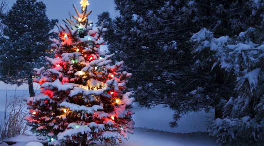 Way's To Give Back This Holiday Season