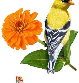 I am Goldfinch
