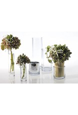 Small Clear Tapered Glass Vase