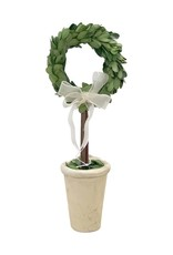 Preserved Boxwood Ring Topiary - Small