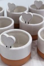 Heart Plant Bowl