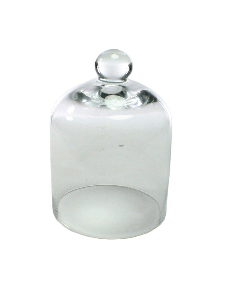 Clear Mini Glass Cloche