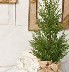 """Fine Cedar Tree - 24"""""""