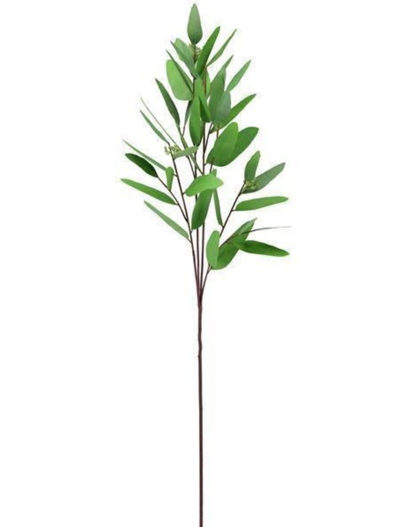 "32""L Green Eucalyptus Spray Stem"