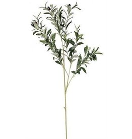 Green Olive Spray