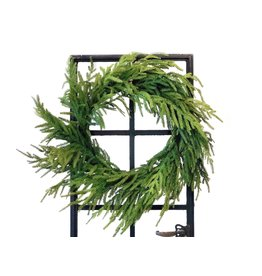 """24"""" Just Cut Norfolk Pine Wreath"""