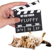 Awesome Cat Video Clapperboard