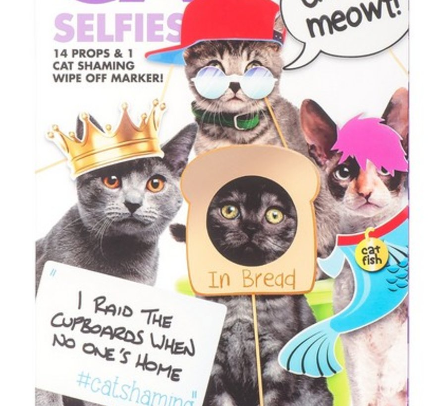 Kensington Cat Selfies