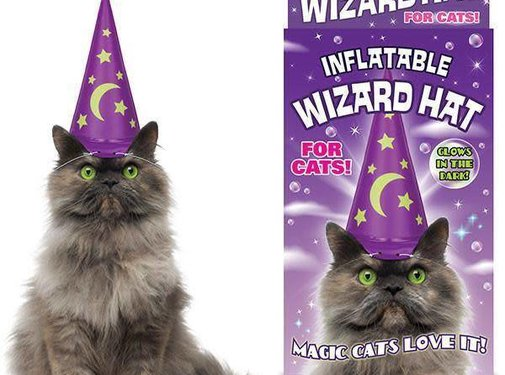 Merlin Moggie Inflatable Wizard Hat