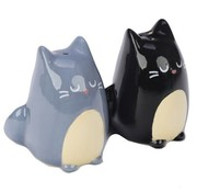 Samuel and Sophia Cat Salt And Pepper Set