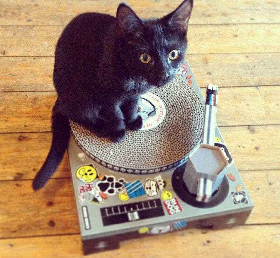 DJ Kittie Deck