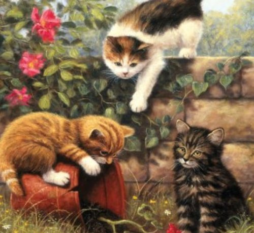 Purrcasso Paint by Numbers Kit