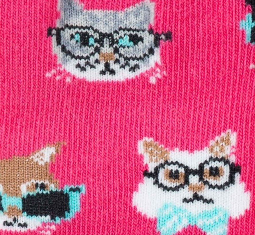 Mensa Smarty Cats Toddler's Socks