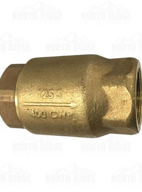"Apollo 6110801 Brass 2"" Check Valve"