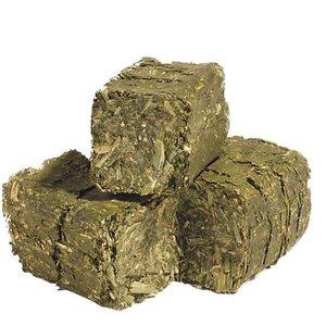 Alfalfa Timothy Cubes