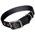 Hamilton 3/4in Nylon Dog Collar