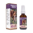 Riva's Remedies Digestive Drops