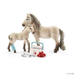 First Aid Kit for Icelandic Horses