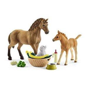 Baby Animal Care w/ Quarter Horses