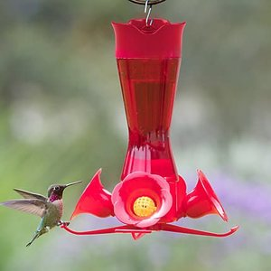 Plastic Hummingbird Feeder