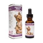 Riva's Remedies Digestive Drops (Dog&Cat)