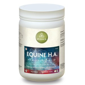 Purica Equine H.A.