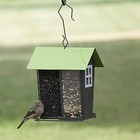 Duo Wild Bird Feeder