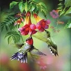 Summer Hummer 1000pc Puzzle