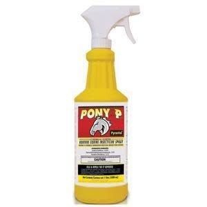 Pony XP