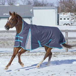 Maxim Storm Winter Blanket Graphite